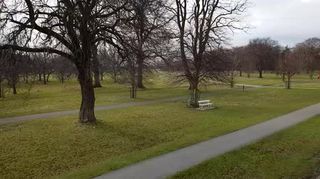 puente peatonal : Phoenix Park in Dublin - the biggest recreation park in the city