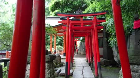 tradição : The famous red gate path of Nezu Jinja Shrine in Tokyo - TOKYO  JAPAN - JUNE 17, 2018
