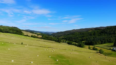 bales : Flight over green fields and farmland with hay bales in Scotland