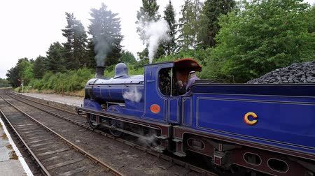 lakes of scotland : Scottish Railway - the famous Speyside Steam train Stock Footage