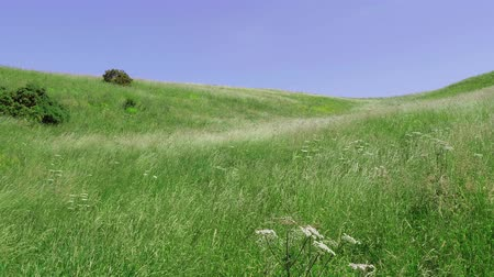 geologia : Beautiful meadows and hills around Edinburgh