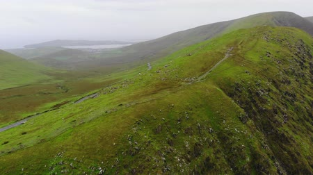 kerry : The green hills of Ireland – aerial view from a drone