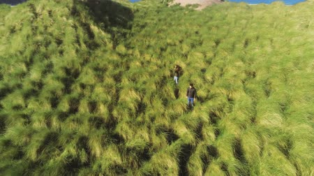 atlântico : Two people walk through the great scenery of the Irish west coast – view from above