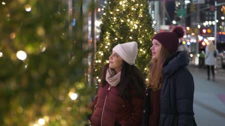 apple park : Young women in New York doing Christmas shopping on Fifth Avenue Stock Footage