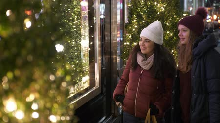 quadretti : Young women in New York doing Christmas shopping on Fifth Avenue Filmati Stock