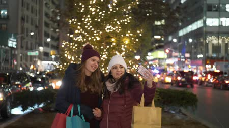 apple park : Christmas Shopping in New York a wonderful experience for women