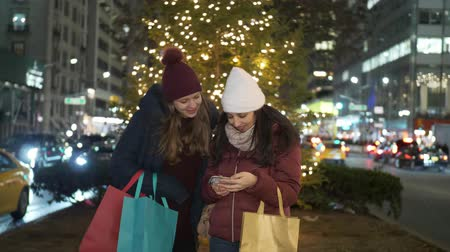 maravilhoso : Christmas Shopping in New York a wonderful experience for women