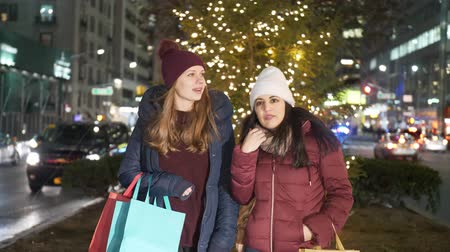 jabłka : Christmas Shopping in New York a wonderful experience for women