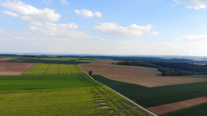 Литва : Beautiful grasslands and country landscape from above - aerial flight footage