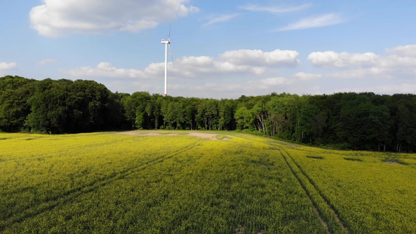 litvanya : Amazing aerial flight over fields in the country
