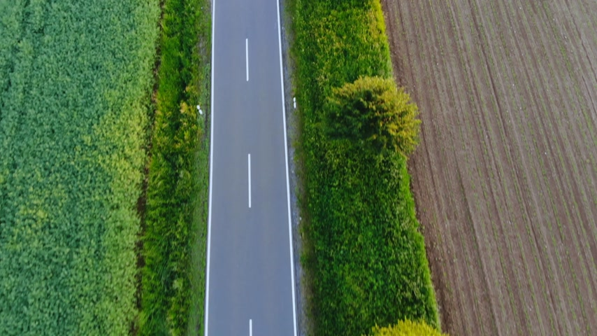 open blossom : Aerial drone flight over a street in the nature