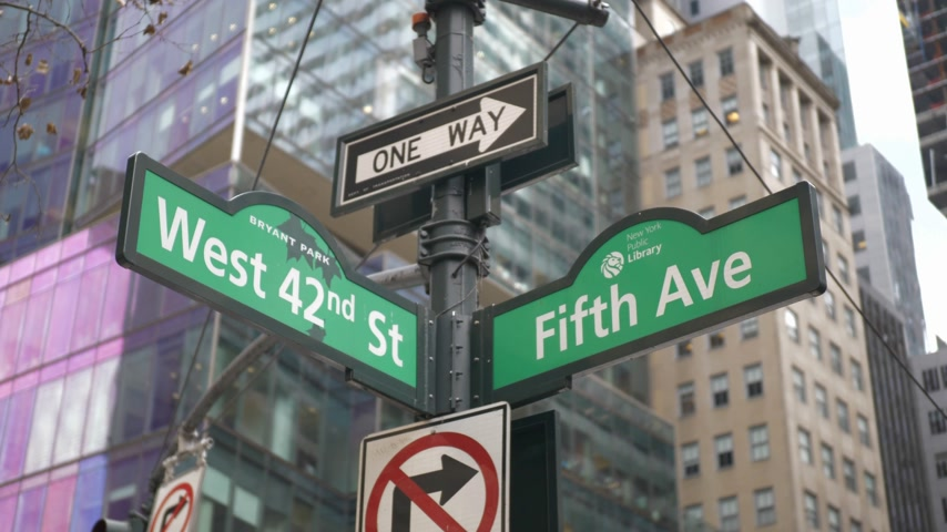 avenida : Fifth Avenue street sign in New York