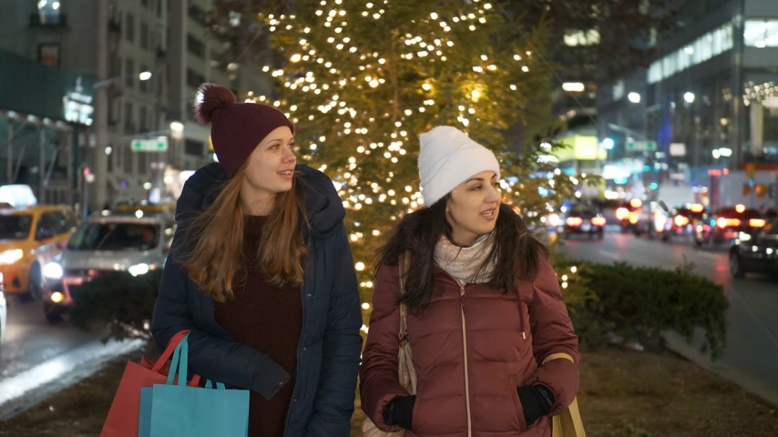 apple park : Women on Christmas shopping tour in New York