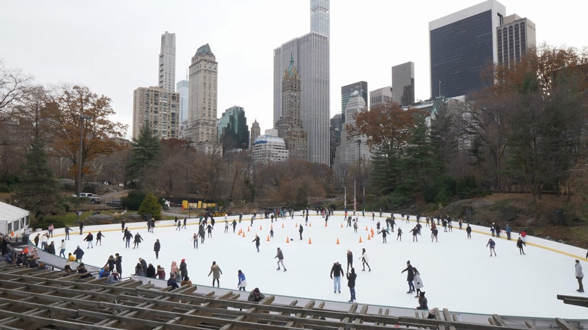 apple park : Ice Rink at Central Park in winter