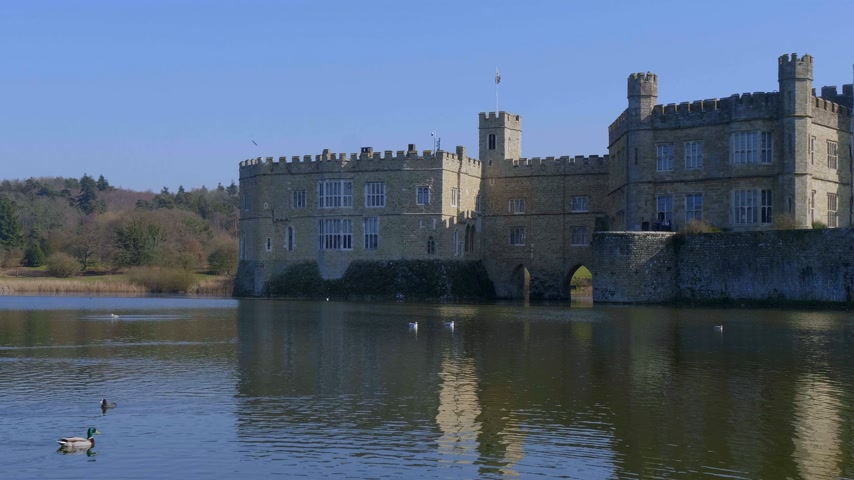 zwarte zwaan : Famous Leeds Castle in UNITED KINGDOM - KENT, UNITED KINGDOM - FEBRUARY 20, 2019 Stockvideo
