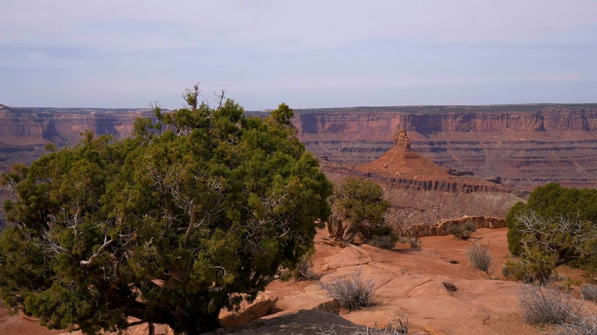 moab : Dead Horse Point in Utah - wide angle view