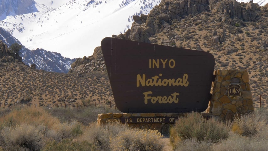 piskopos : Inyo National Forest in the Sierra Nevada - BISHOP, USA - MARCH 29, 2019 Stok Video