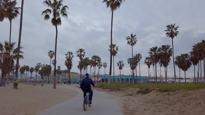pedestrian only : Ocean Front Walk along Venice Beach - LOS ANGELES, USA - APRIL 1, 2019 Stock Footage