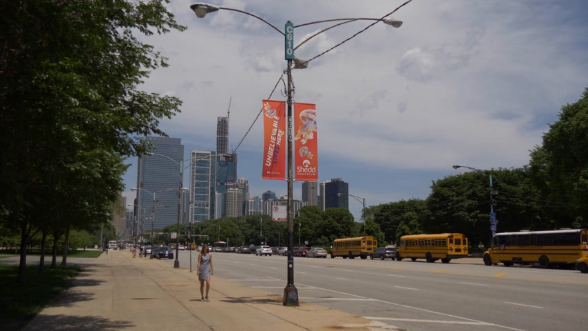ミシガン州 : Street view in Chicago on a sunny day - CHICAGO. UNITED STATES - JUNE 11, 2019