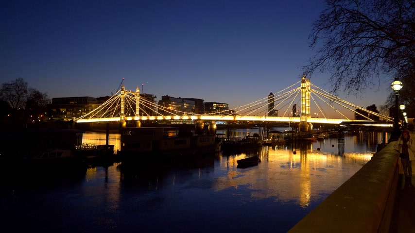 street market : wonderful Albert Bridge London evening view