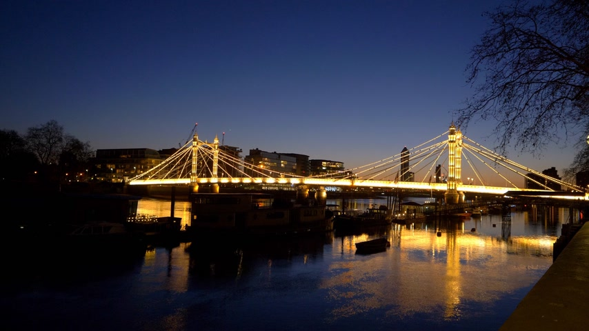 grande bretagne : incroyable Albert Bridge Londres de nuit