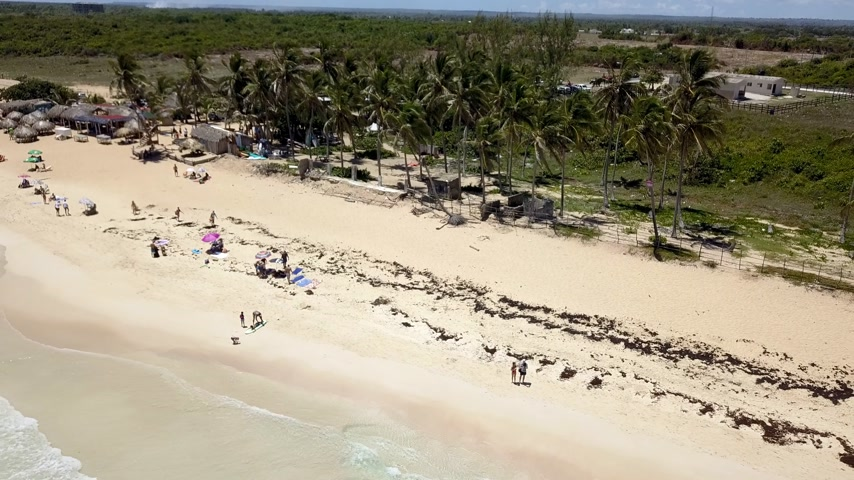 dominicana : Aerial view of Macao beach and promenade with palm trees and people lying on the beach. Dominican republic