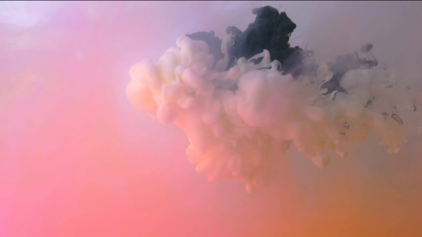 Multicolored ink composition in water. Black and white ink streams float and mix in the center of the composition. Colorful abstract combination of acrylic ink. Abstract swirls on a red-pink backgroun 動画素材