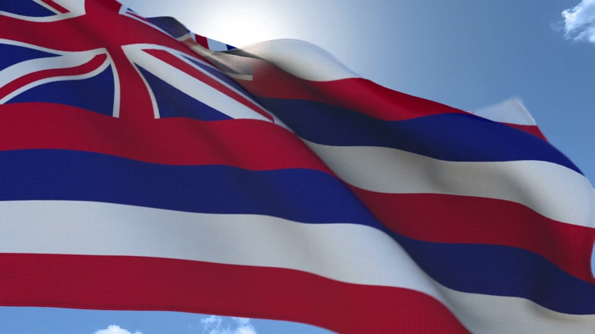 hawaje : Flag of Hawaii Waving in the Wind Wideo