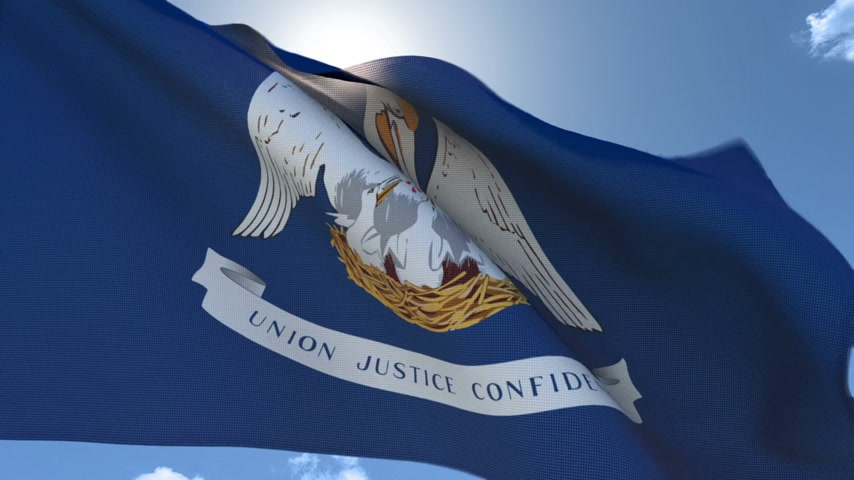 Flag of Louisiana Waving in the Wind Wideo