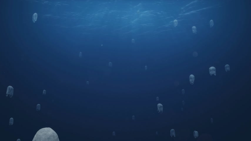 biodegradable : Plastics Bags Swimming Stock Footage