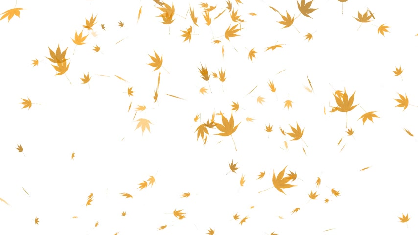 listki : HD Loopable Falling Autumn Leaves Animation