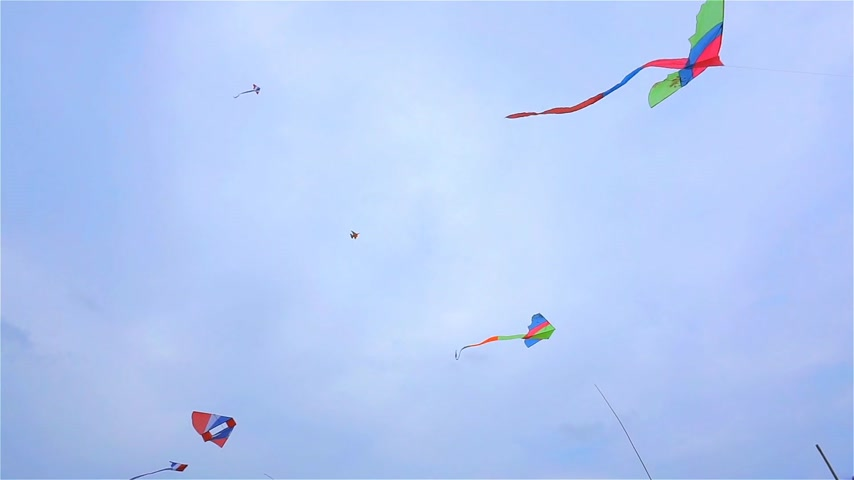 Many kite on the sky Stock Footage