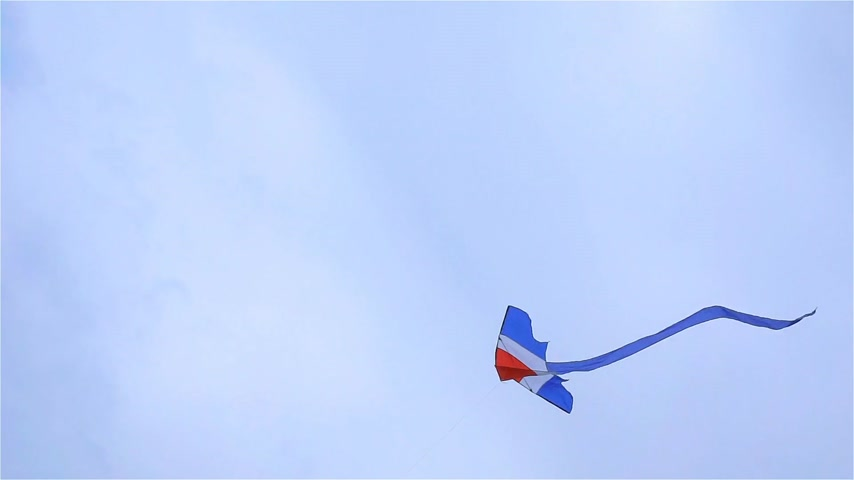 A kite on the sky