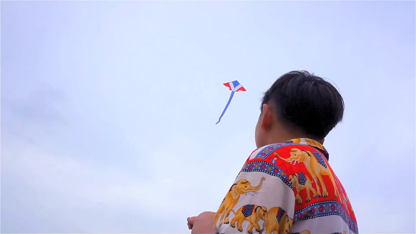 Children fly a kite Stock Footage