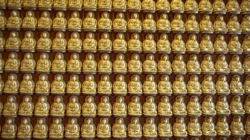 Golden buddha at wall in temple (Panning shot)
