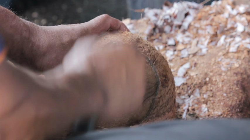 machete : hand of man remove coconut husk from coconut shell with knife Stock Footage