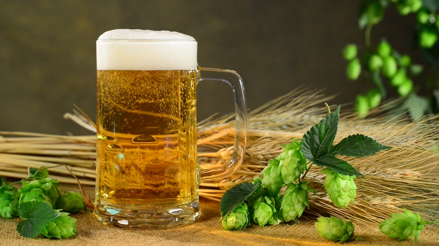 beer tap : rising bubbles in the beer glass with hops, professional lighting Stock Footage