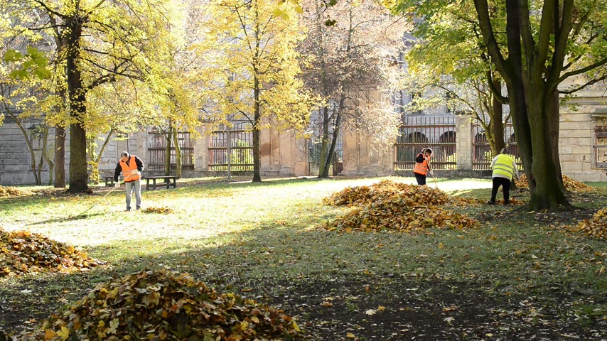 limpar : Town of Postoloprty, Czech Republic - November 3, 2016: Workers rake leaves out in the autumn park.
