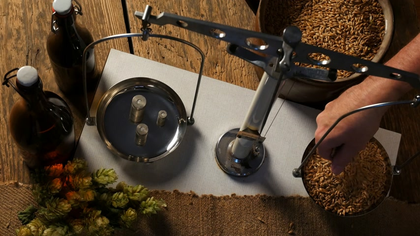 craft beer : Home Brewing of Beer. Man Weighs Barley. View Above. Stock Footage