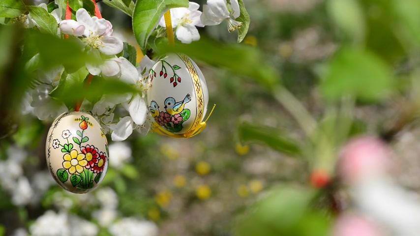 profundidade de campo rasa : Easter eggs hanging on the apple tree in the garden
