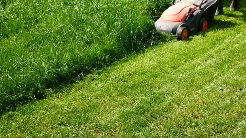 Man is mowing the grass in the garden. No camera movement. Stok Video