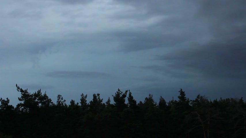 cıvataları : Timelapse ominous clouds and lightning over a wood. Stok Video