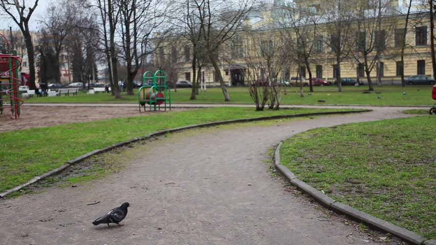 uliczka : mother with baby pram walking through the park