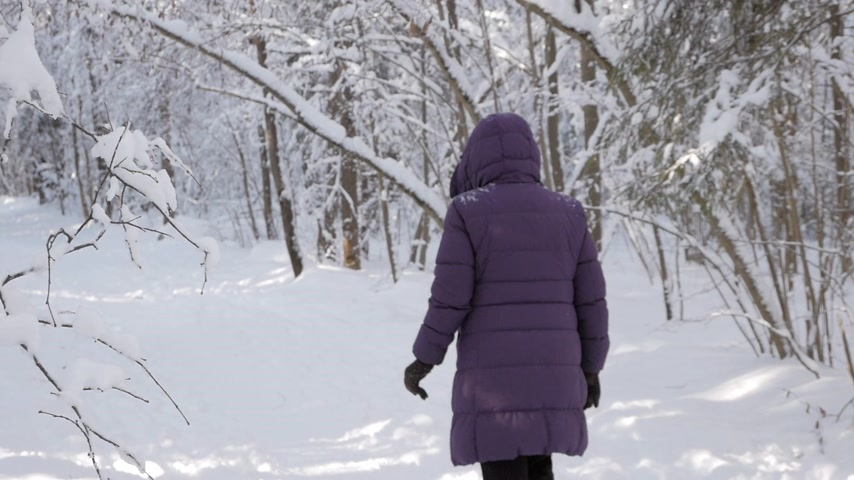 styczeń : Woman in winter jacket and hood walking away from camera into beautiful winter forest covered with white fresh snow on bright sunny day. Wideo