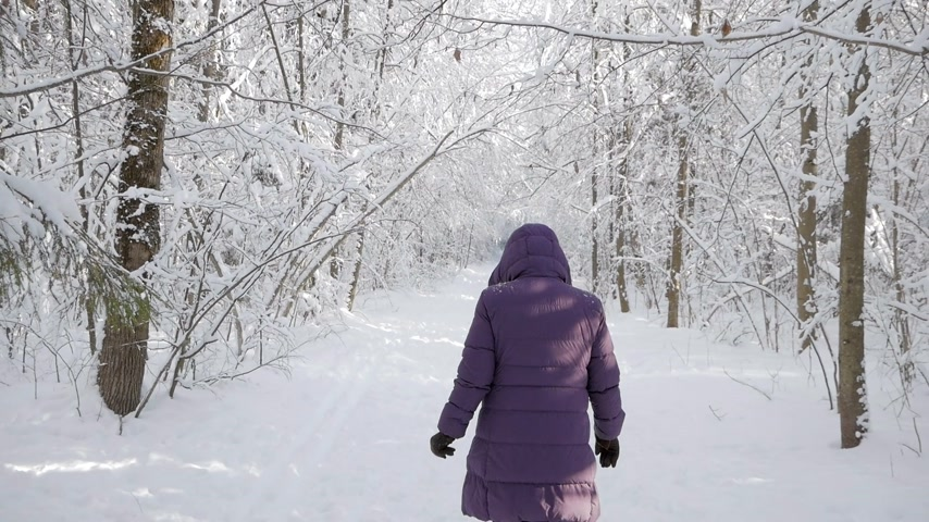 janeiro : Woman wearing winter jacket and hood walking away from camera into beautiful winter forest covered with white fresh snow on bright sunny day. Vídeos