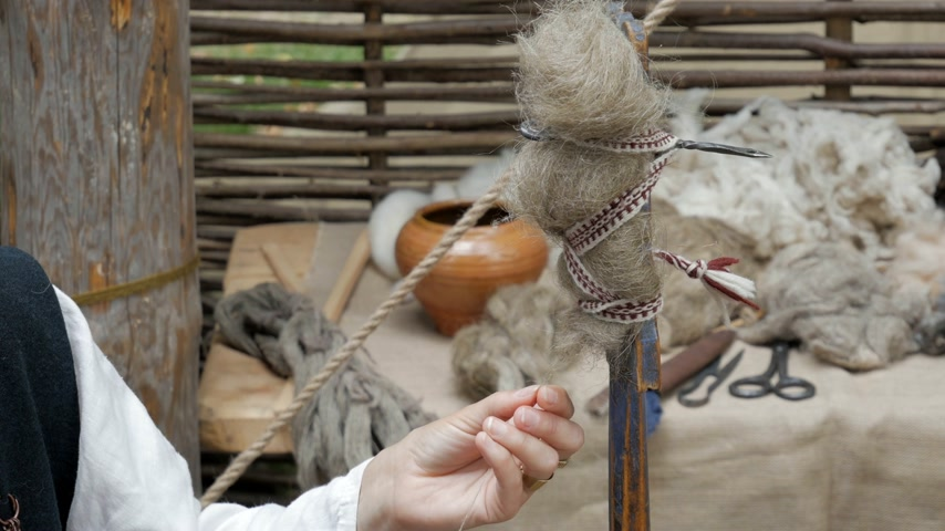 再建 : Reconstruction of medieval hand spinning. Spinner pulling out wool strand from unspun fibers secured on distaff 動画素材