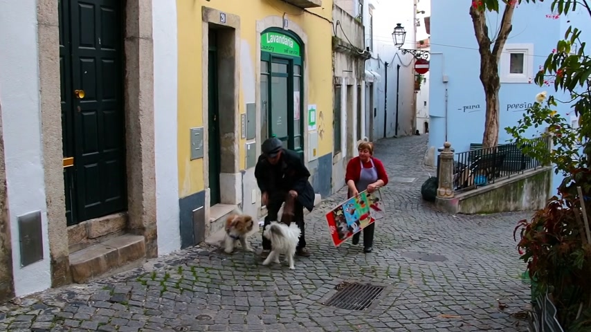dog bite : Lisbon, Portugal - January 2018: A man and a woman try to stop the fighting dogs. Domestic pets aroused the whole quarter. Stock Footage