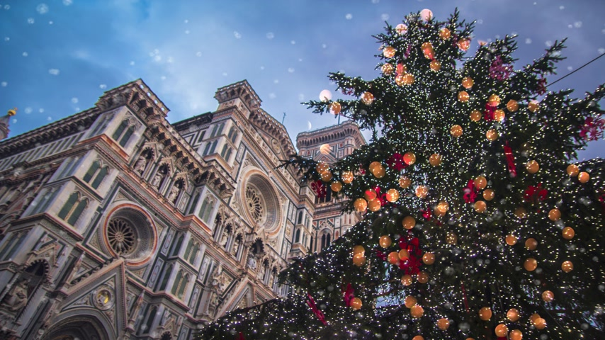 firenze : Christmas tree near Santa Maria del Fiore, the main church of Florence Stock Footage