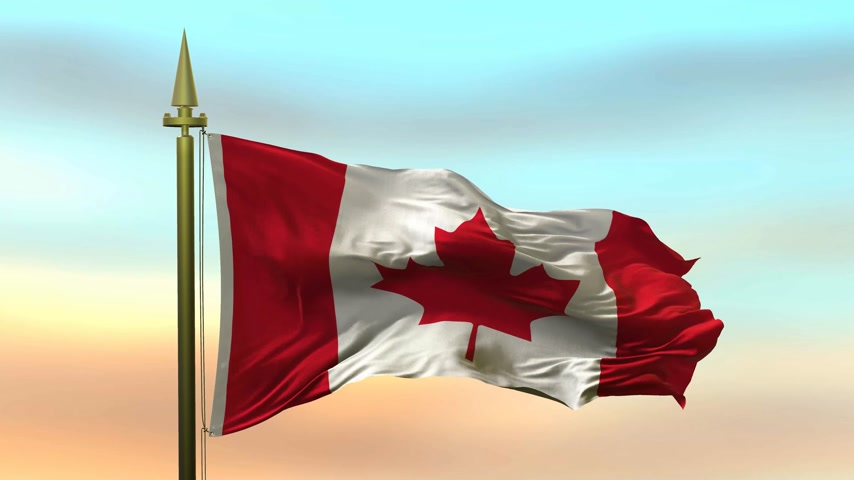 National Flag of  Canada waving in the wind against the sunset sky background slow motion Seamless Loop Animation