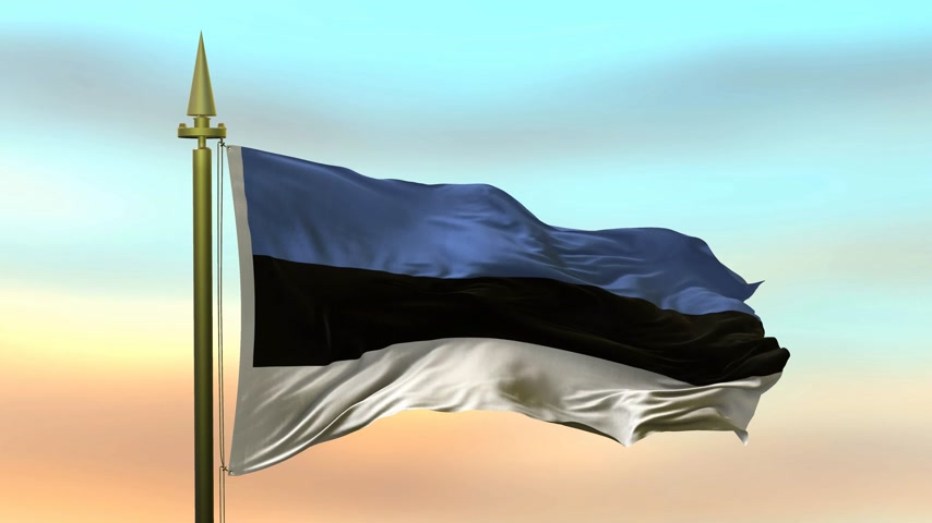 National Flag of  Estonia  waving in the wind against the sunset sky background slow motion Seamless Loop Animation Stok Video